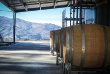 NZ Wine News