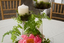 Centerpieces / by Lisa Christadore