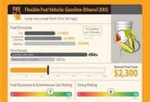 Food or Fuel?
