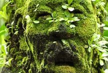 Green Man/ Oak King/ Jack of the Green / by Shasta Seagle
