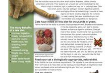Veterinary Advice Sheet