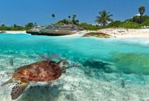 Cancun Great Vacations Blog