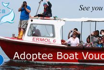 Adoptee Boat Vouchers / All our Adoptees receive boat vouchers in their pack of goodies!!