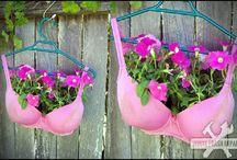 gardening / by Terri Burch