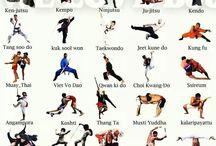 Centro Fitness / Allenamento