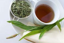 léky a čaje z bylinek