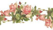 Guardas y Marcos con Flores