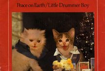 Kitten Cover