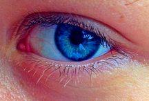 肌 目 口