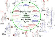 Meridiane energetice