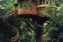 Treehouses / Treehouses . Houses in the trees.