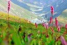 Azad Kashmir / Inspiration for Shahana: Through my Eyes
