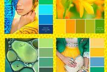 """Коллажи """"Эйфория цвета"""" / Цветовые сочетания,которые мне нравятся"""