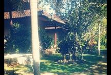 maison au paradis
