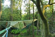 Camping / by Les Pts