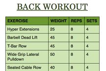 Back Workouts / by Morgan Meador