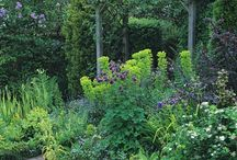 Design Inspiration - Garden & Landscape
