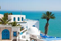 Tunisia / Poczujcie gorący oddech największej pustyni świata – Sahary. Przenieście się do świata z baśni tysiąca i jednej nocy, przeżyjcie niesamowite spotkanie z fauną parku Friguia. Niezwykłe pejzaże podziwiane z grzbietu wielbłąda, wizyty w medynach i na tradycyjnych bazarach. W Tunezji nie brakuje wrażeń!