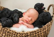 Babies and Puppies / What is even cuter than a picture of a baby? A picture of a baby AND puppies!!