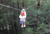 Sonoma Canopy Tours, Occidental, CA