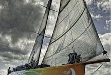 Volvo oceanrace