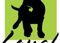 Maine Dog Shops