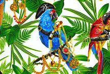 Papugi,tukany