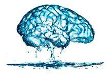 Brain barrier
