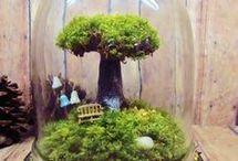 Mini Live Worlds