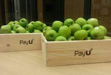 Współpraca z PayU / Firma PayU w ramach rebrandingu przeprowadziła akcję, której jednym z elementów komunikacyjnych były owoce!