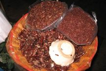 Comida de mi oaxaca / Comida  tradicional de oaxaqueña
