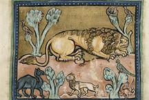 Львы средневековья