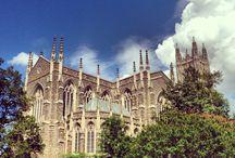 Duke University / University