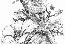 Малышка колибри и цветы