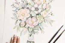 Drawing (plants)