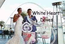 White Dove Release for Weddings / A Dove release is one of the most talked about events at weddings and is growing in popularity.  They certainly give the 'WOW' factor. At White Heart Doves we are devoted to making your day special for you, your family and your guests.  N.B. ALL PICTURES ON THIS BOARD ARE COPYRIGHT OF WHITE HEART DOVES   www.whiteheartdoves.com