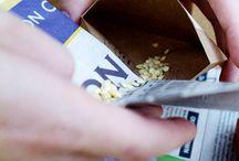 Garden - Seed Savings