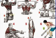 Workout - Back