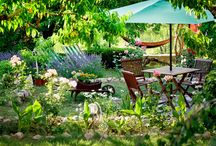 **Hangulatfokozó** / Tiszta udvar… gyönyörű kert Már-már megszoktuk, hogy a nyár a vártnál korábban érkezik és a meleg hirtelen csap le ránk. A napsütés csalogat a szabadba, a természettel együtt mi is megújulni, felfrissülni vágyunk. Íme néhány ötlet, hogy kertünkbe is becsempésszük az újjászületés örömét.