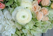Flower themes - green peach