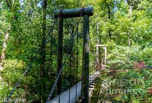 Crowley Ridge State Park,Paragould,Ark / Crowley's Ridge State Park, west of Paragould, is one of the original six parks built by the Civilian Conservation Corps, Born in the depths of the Great Depression