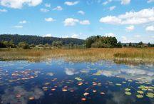 Lacs de Franche-Comté # Lakes of Franche-Comté