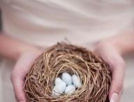 Wedding Ideas / by Oma Pilch