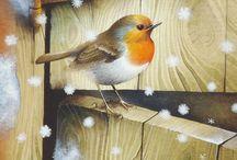 Uccelli / disegni, acquarelli e quant'altro riguardante piccoli uccellini.