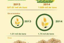 Agricultura din Romania / Informatii utile pentru agricultori precum si pentru cei care isi ingrijesc gradina de acasa
