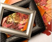 fall/halloween / by Sarah Lessor