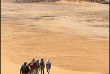 TRAVEL: Algeria