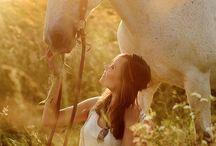 Shooting Pferd