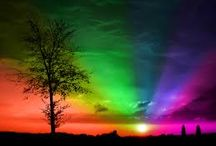 Color my World a Rainbow of Colors / by Janie JC 💙💜💗