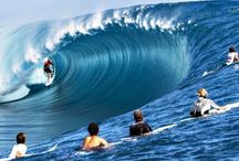 Contoh surf 3